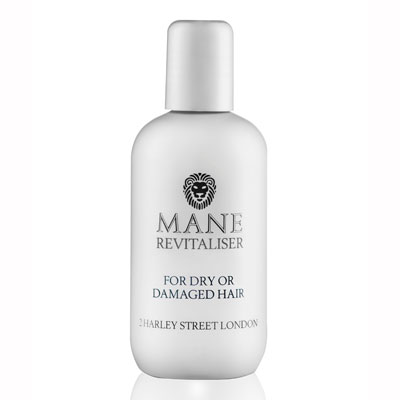 mane revitaliser for dry or damanged hair