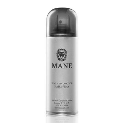 mane seal and control hair spray