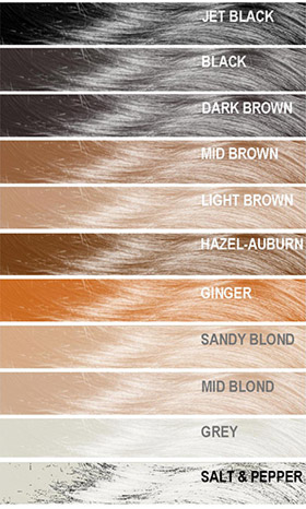 Mane Hair Loss Fibres Colour Chart